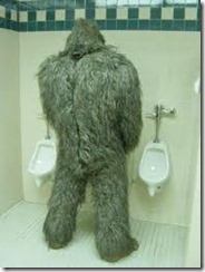 BigFoot (Yeti, Mapinguari, Sasquatch, Yowie)
